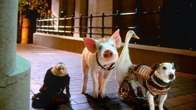 Babe: Pig in the City Trailer
