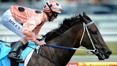 Black Caviar - The Horse of a Lifetime Trailer