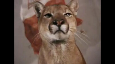 Charlie, the Lonesome Cougar Trailer