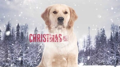 Christmas with Tucker Trailer