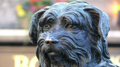 Greyfriars Bobby: The True Story of a Dog Trailer