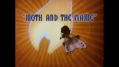 Moth and the Flame Trailer