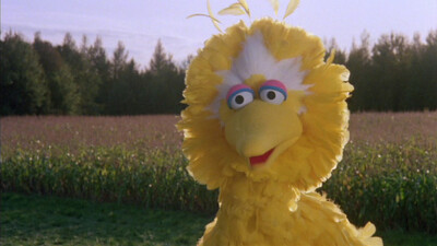 Sesame Street Presents Follow That Bird Trailer