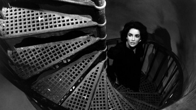 Suddenly, Last Summer Trailer