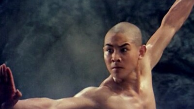 The Shaolin Temple Trailer