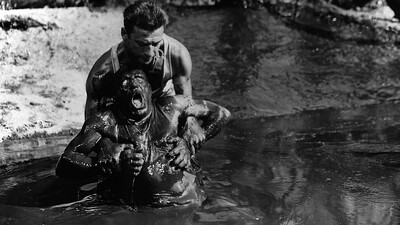 The Wages of Fear Trailer