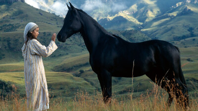The Young Black Stallion Trailer