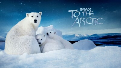To the Arctic Trailer
