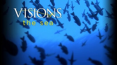 Visions of the Sea Trailer