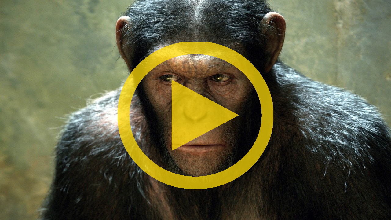 Rise of the Planet of the Apes (2011) - Official HD Trailer
