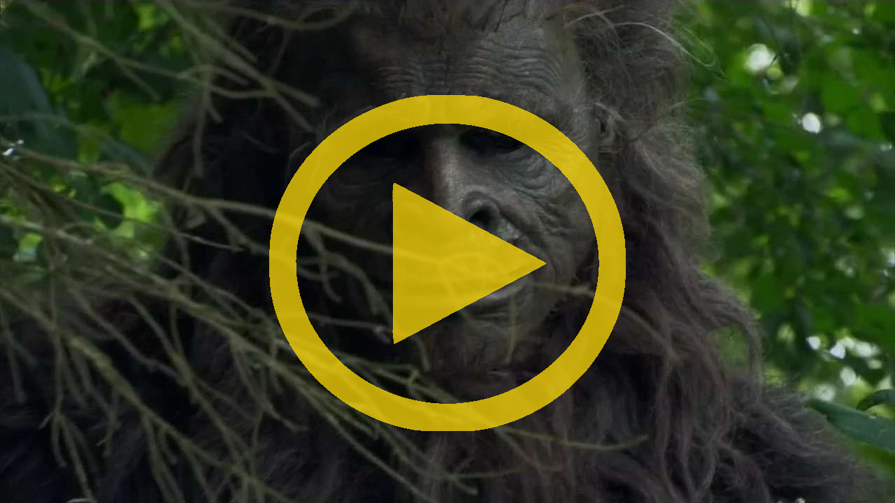 Prudence And The Erotic Adventure Of Bigfoot