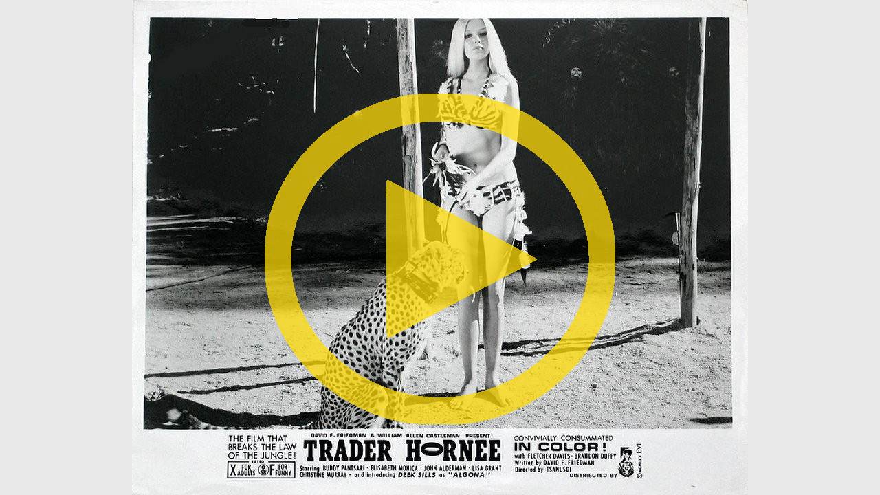 Trader Hornee | movies to watch online for kids