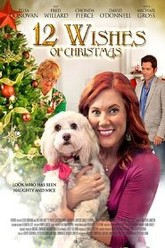 12 Wishes of Christmas Trailer