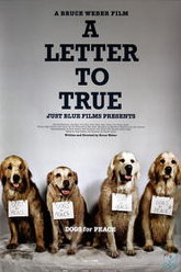 A Letter To True Trailer