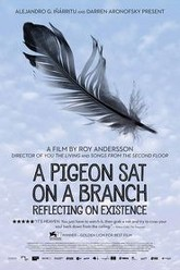 A Pigeon Sat on a Branch Reflecting on Existence Trailer