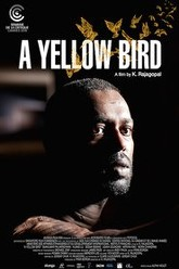 A Yellow Bird Trailer