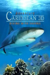 Adventure Caribbean 3D: Diving With Sharks Trailer
