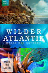 Atlantic: The Wildest Ocean on Earth - Life Stream Trailer