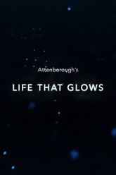 Attenborough's Life That Glows Trailer