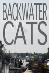 Backwater Cats Trailer
