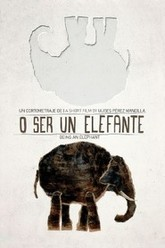 Being an Elephant Trailer