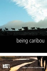 Being Caribou Trailer