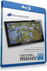 BluScenes Gallery Musee - Impressionism & Post Impressionism Trailer