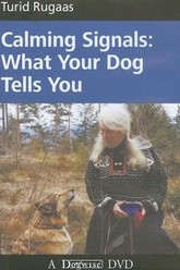 Calming Signals: What Your Dog Tells You Trailer