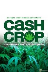 Cash Crop Trailer