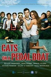 Cats on a Pedal Boat Trailer
