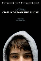 Crabs in the Sand Trailer