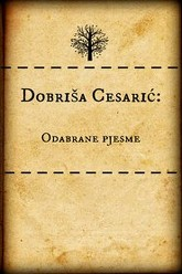 Dobrisa Cesaric- Selected Poems Trailer
