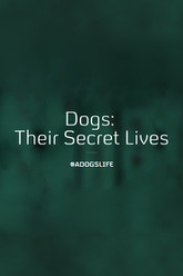 Dogs: Their Secret Lives Trailer