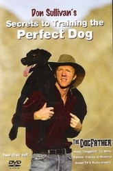 Don Sullivan's Secrets to Training the Perfect Dog Trailer