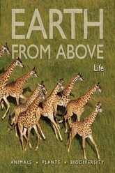Earth from Above: Life Trailer