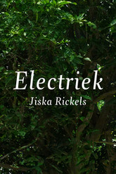 Electriek Trailer