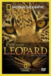Eye of the Leopard Trailer