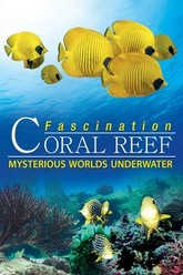 Fascination Coral Reef: Mysterious Worlds Underwater Trailer