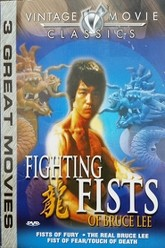 Fighting Fists of Bruce Lee Trailer