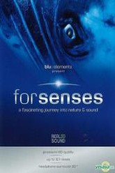 Forsenses - A Fascinating Journey into Nature & Sound Trailer
