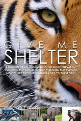 Give Me Shelter Trailer