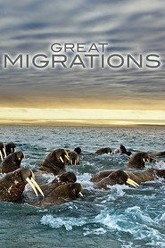 Great Migrations Trailer