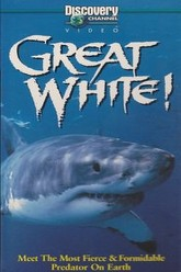 Great White!: Meet The Most Fierce & Formidable Predator On Earth Trailer