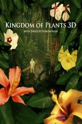 Kingdom of Plants 3D - Life in the Wet Zone Trailer