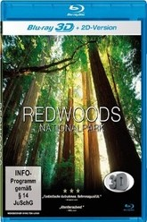Lebende Landschaften - Redwoods Nationalpark in 3D Trailer
