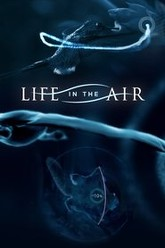 Life in the Air Trailer