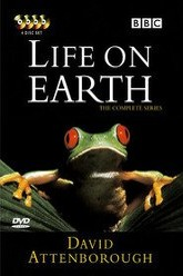 Life on Earth Trailer