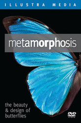 Metamorphosis: The Design and Beauty of Butterflies Trailer