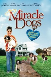 Miracle Dogs Trailer