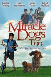Miracle Dogs Too Trailer